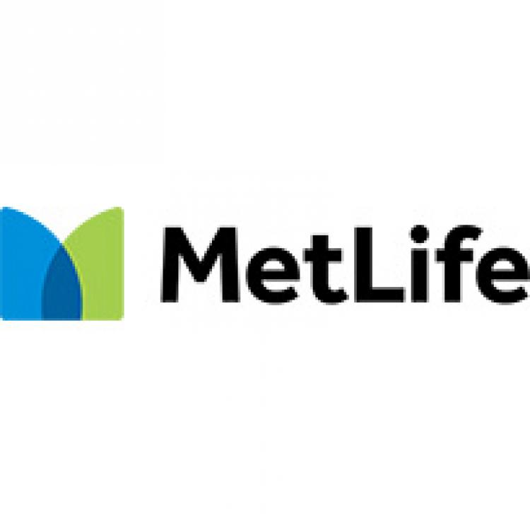 Metlife Insurance Quote Pleasing Union Plus Auto Insurance From Met Life For Union Members & Their